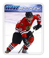 learnmore-case-study-wave-hockey